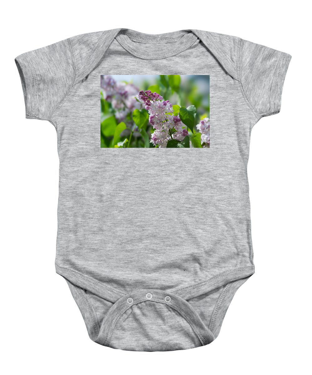 Beautiful Baby Onesie featuring the photograph Pink Lilacs And Green Leaves - Featured 3 by Alexander Senin