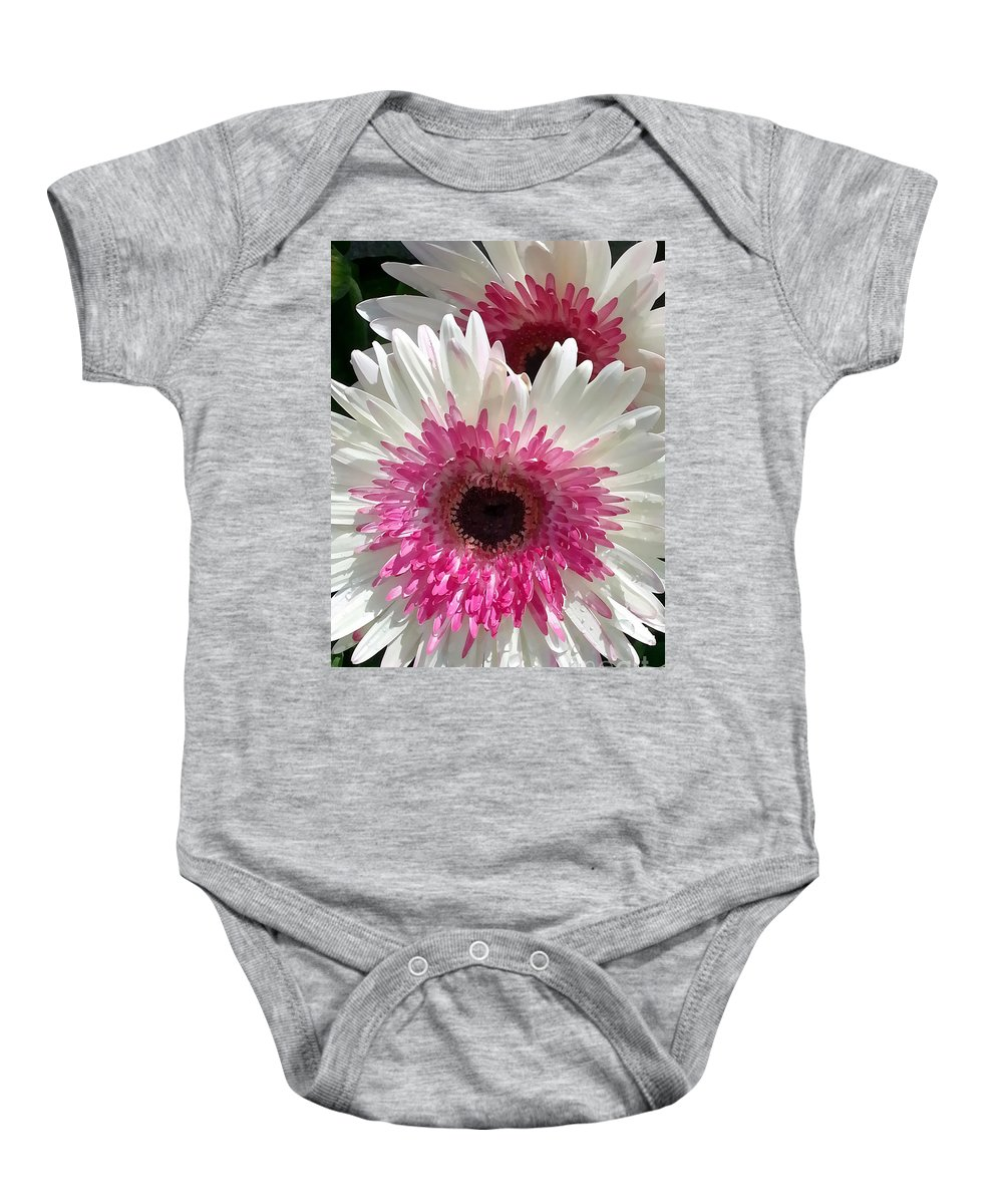 Portrait Baby Onesie featuring the photograph Pink N White Gerber Daisy by Sami Martin