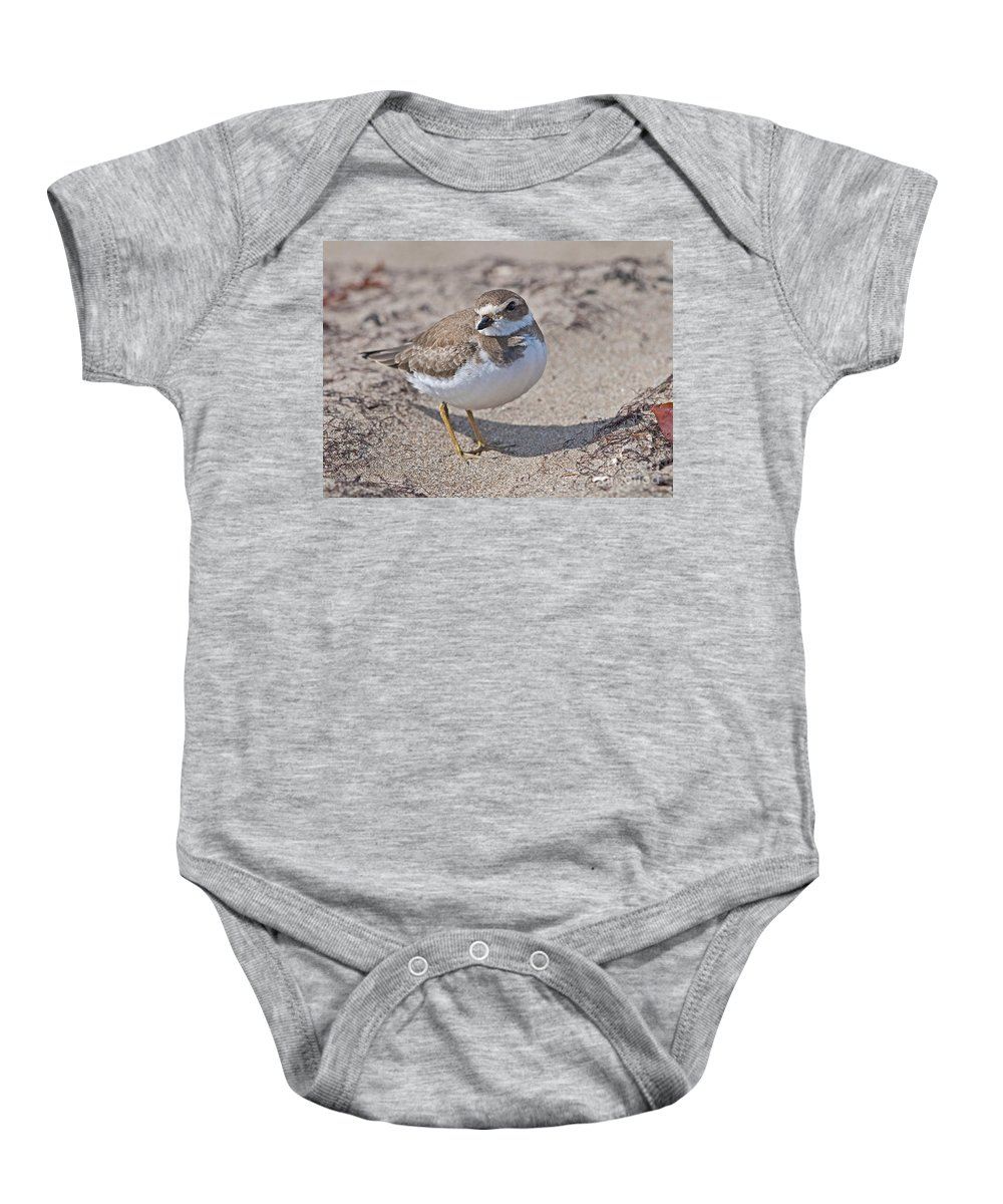 Festblues Baby Onesie featuring the photograph Plover Lover.. by Nina Stavlund
