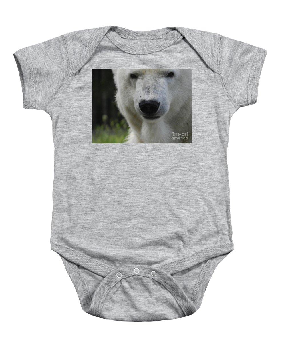 Polar Bear Baby Onesie featuring the photograph Polar Bear 3 by Heather Jane