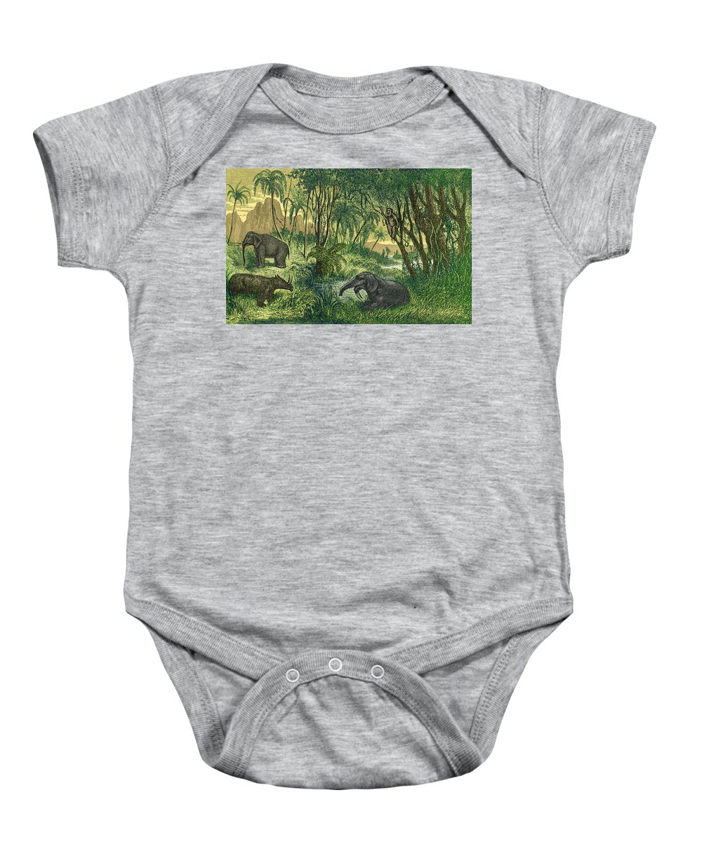 Prehistory Baby Onesie featuring the photograph Prehistoric, Miocene Landscape by Science Source