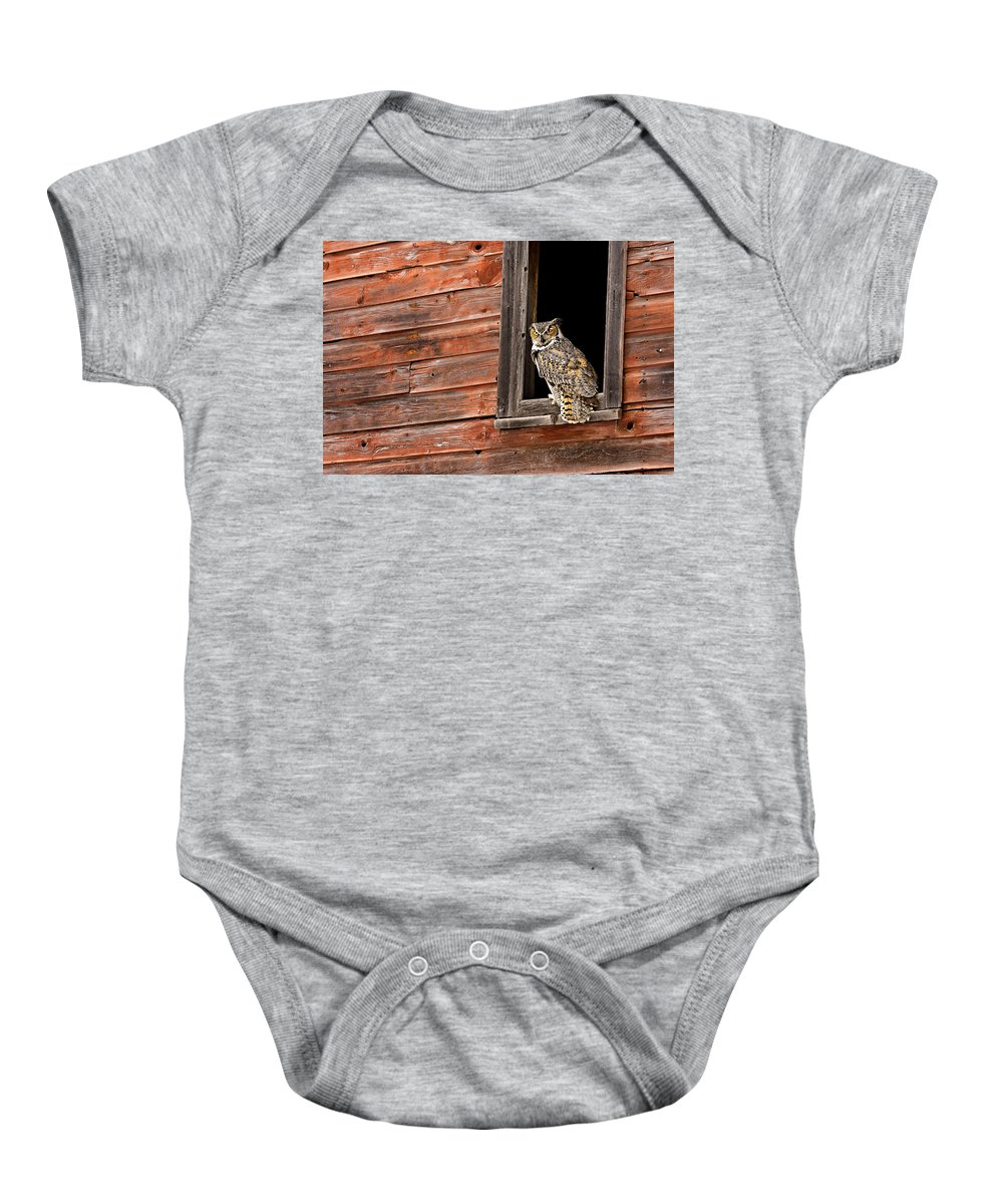 Great Horned Owl Baby Onesie featuring the photograph Professor by Jack Milchanowski