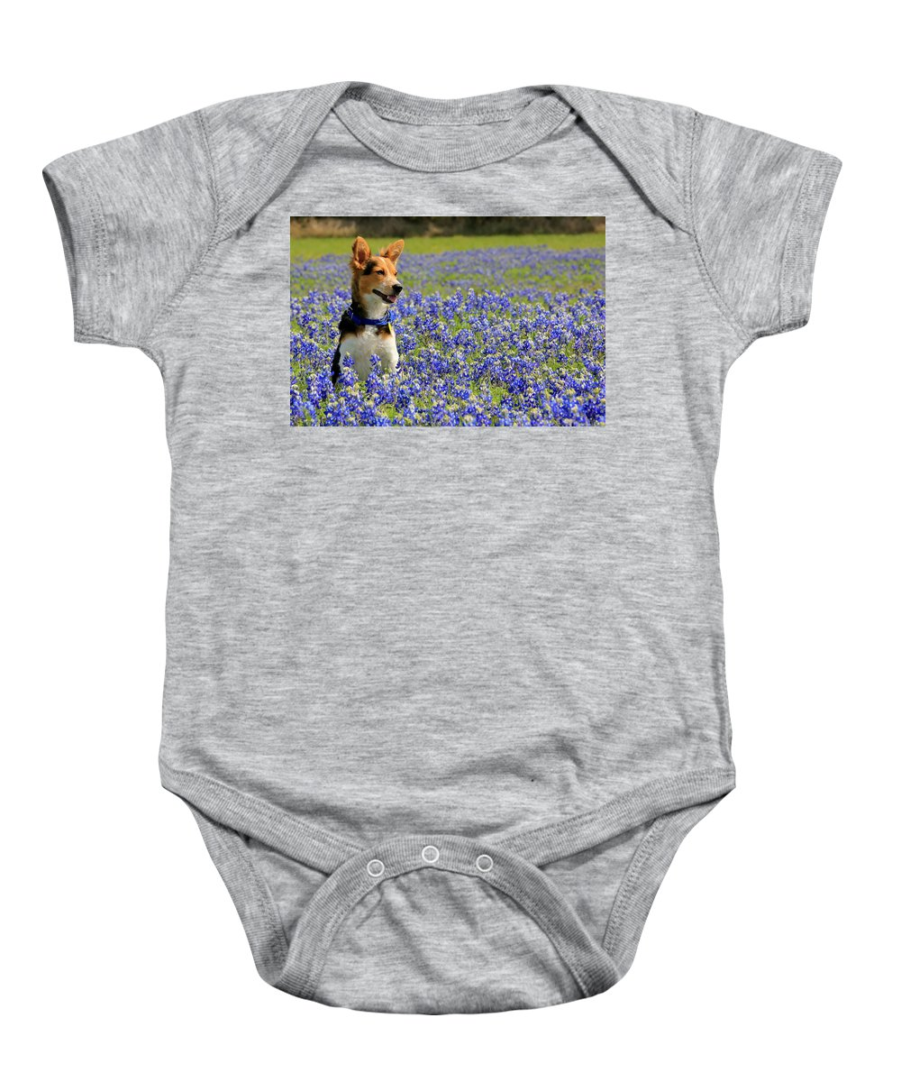 Dogs Baby Onesie featuring the photograph Pup In The Bluebonnets by Lisa Reid