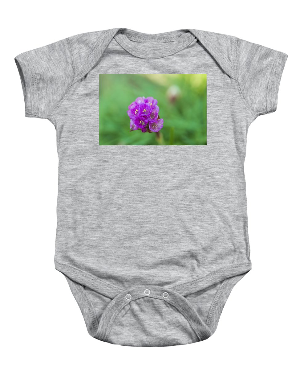 Nature Baby Onesie featuring the photograph Purple Flower by Paulo Goncalves