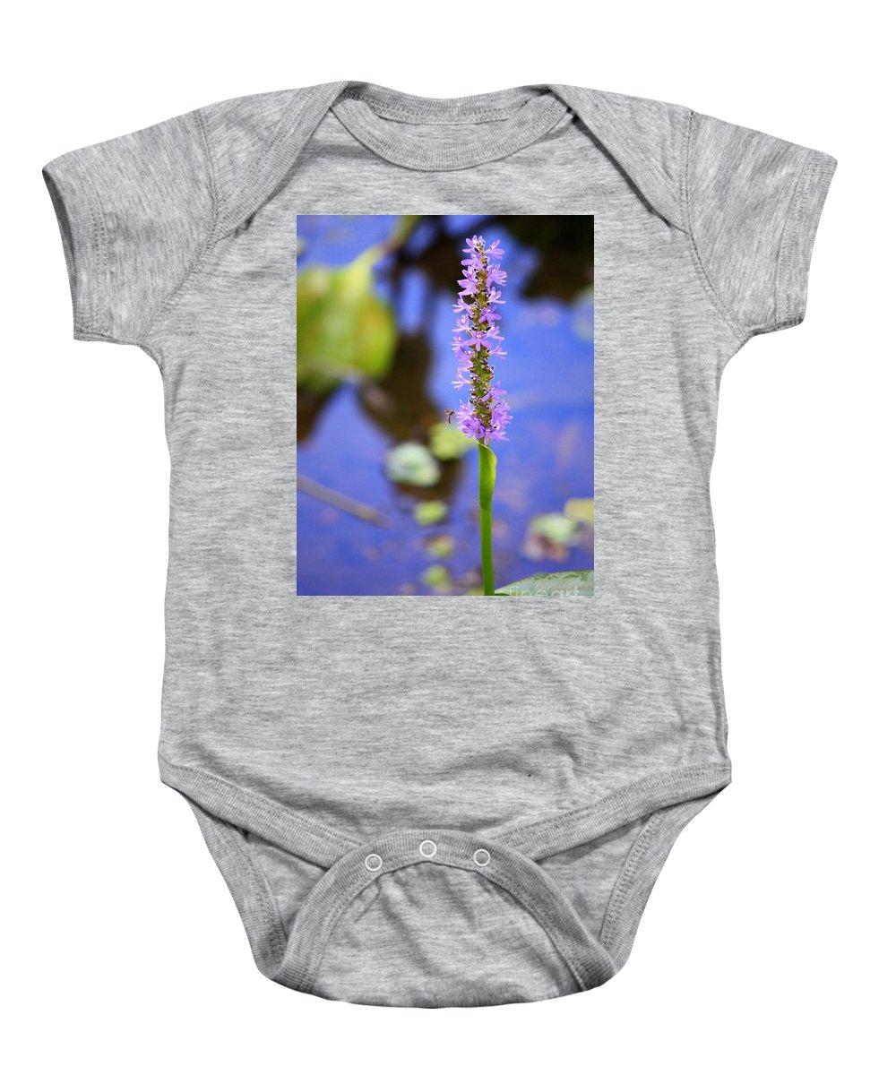 Pickerelweed Baby Onesie featuring the photograph Purple Swamp Flower by Carol Groenen