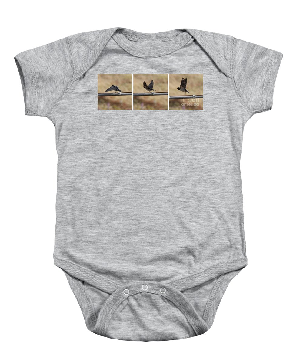 Bird Baby Onesie featuring the photograph Ready For Flight by Adrienne Franklin