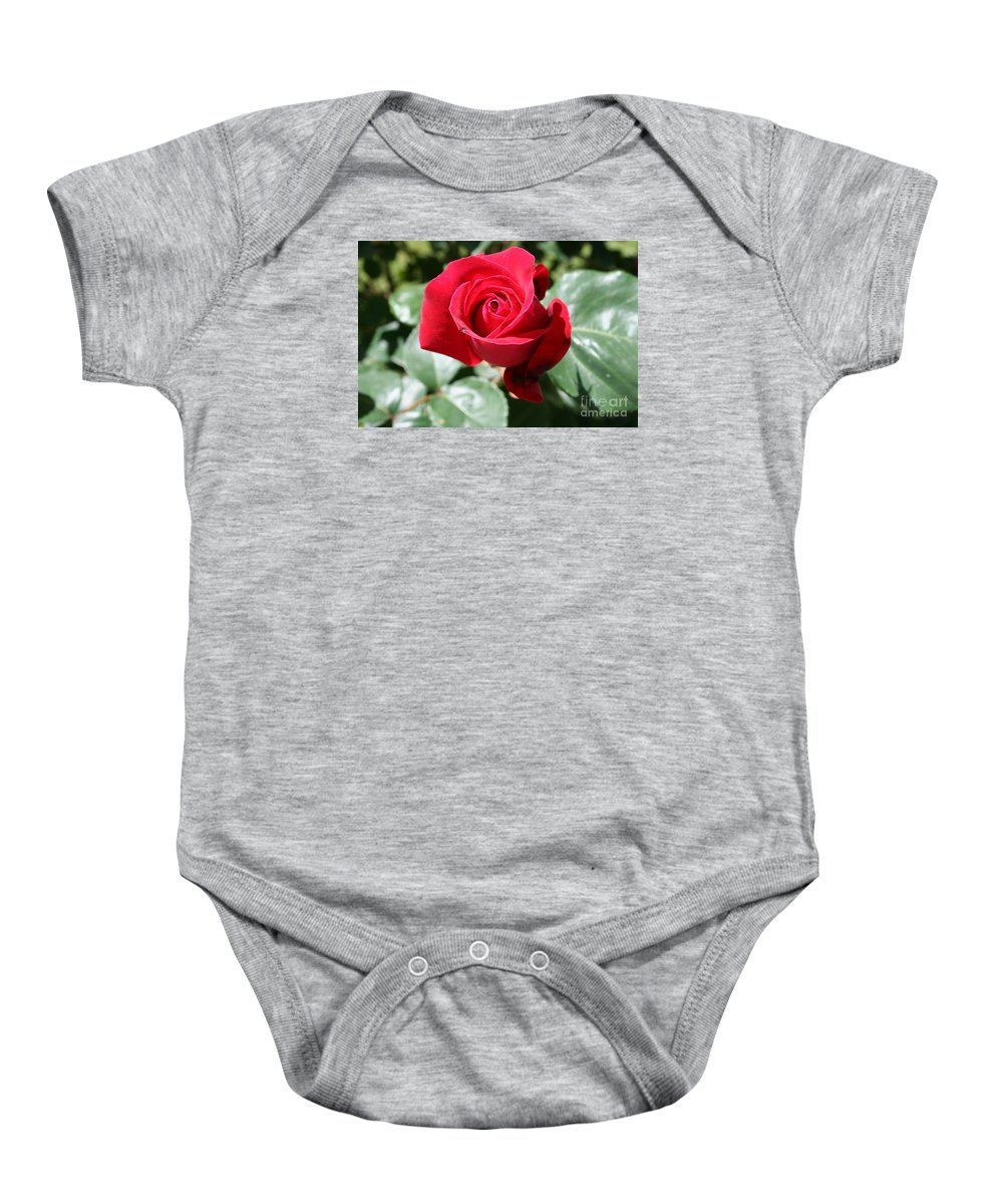 Rose Baby Onesie featuring the photograph Red Rose by Christiane Schulze Art And Photography