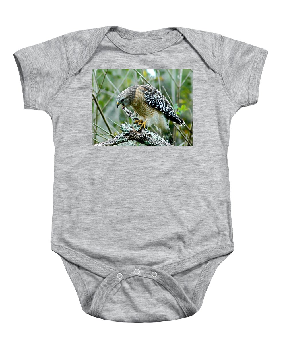 Red Shouldered Hawk Baby Onesie featuring the photograph Red Shoulder Scream by Norman Johnson