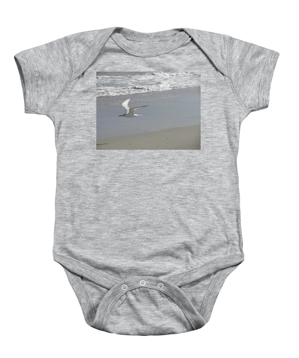 Landscape Baby Onesie featuring the photograph Royal Tern In Flight by Ellen Meakin