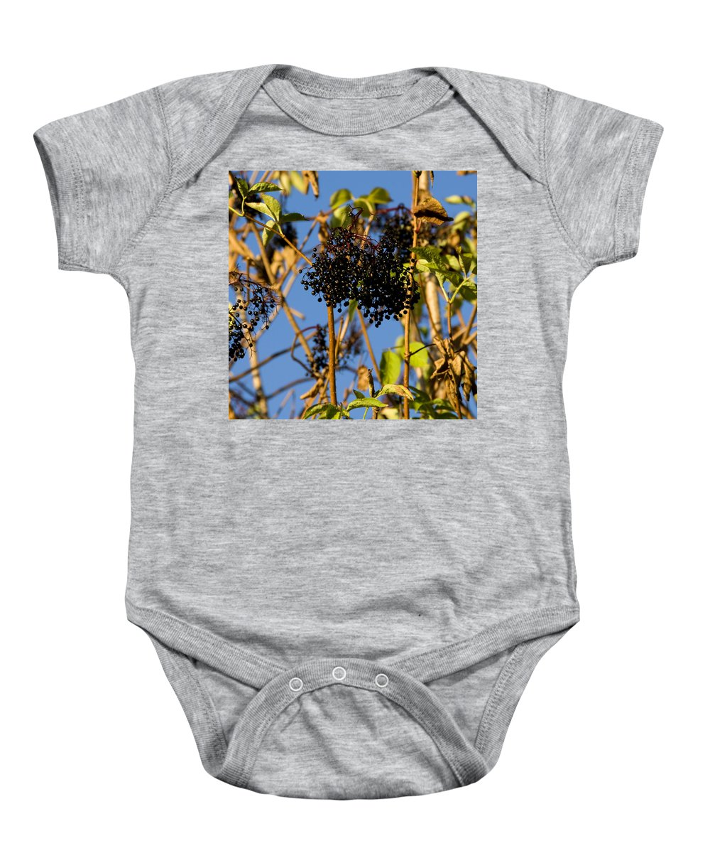 Alternative Baby Onesie featuring the photograph Sambucus Nigra by TouTouke A Y