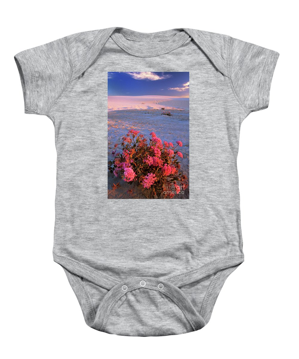 North America Baby Onesie featuring the photograph Sand Verbenas At Sunset White Sands National Monument by Dave Welling
