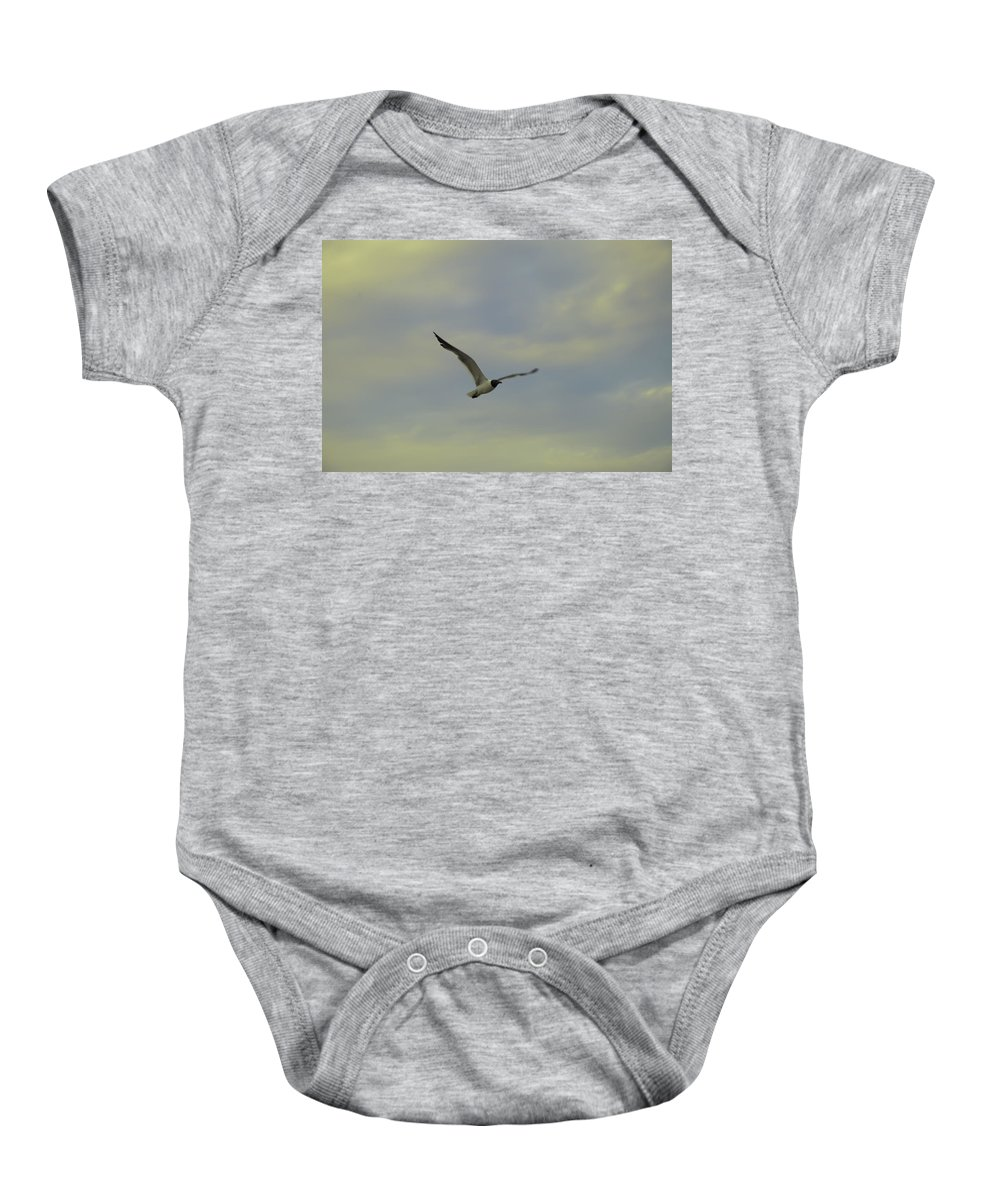 Seagull Baby Onesie featuring the photograph Seagull Soaring by Bill Cannon
