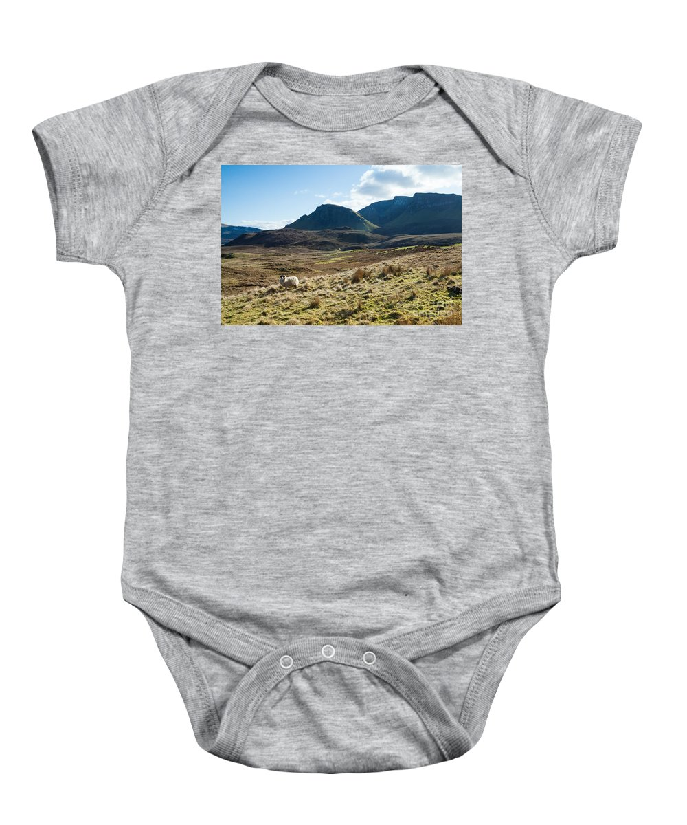 Europe Baby Onesie featuring the photograph Sheep On Grassland Highlands Scotland Uk by Matteo Colombo