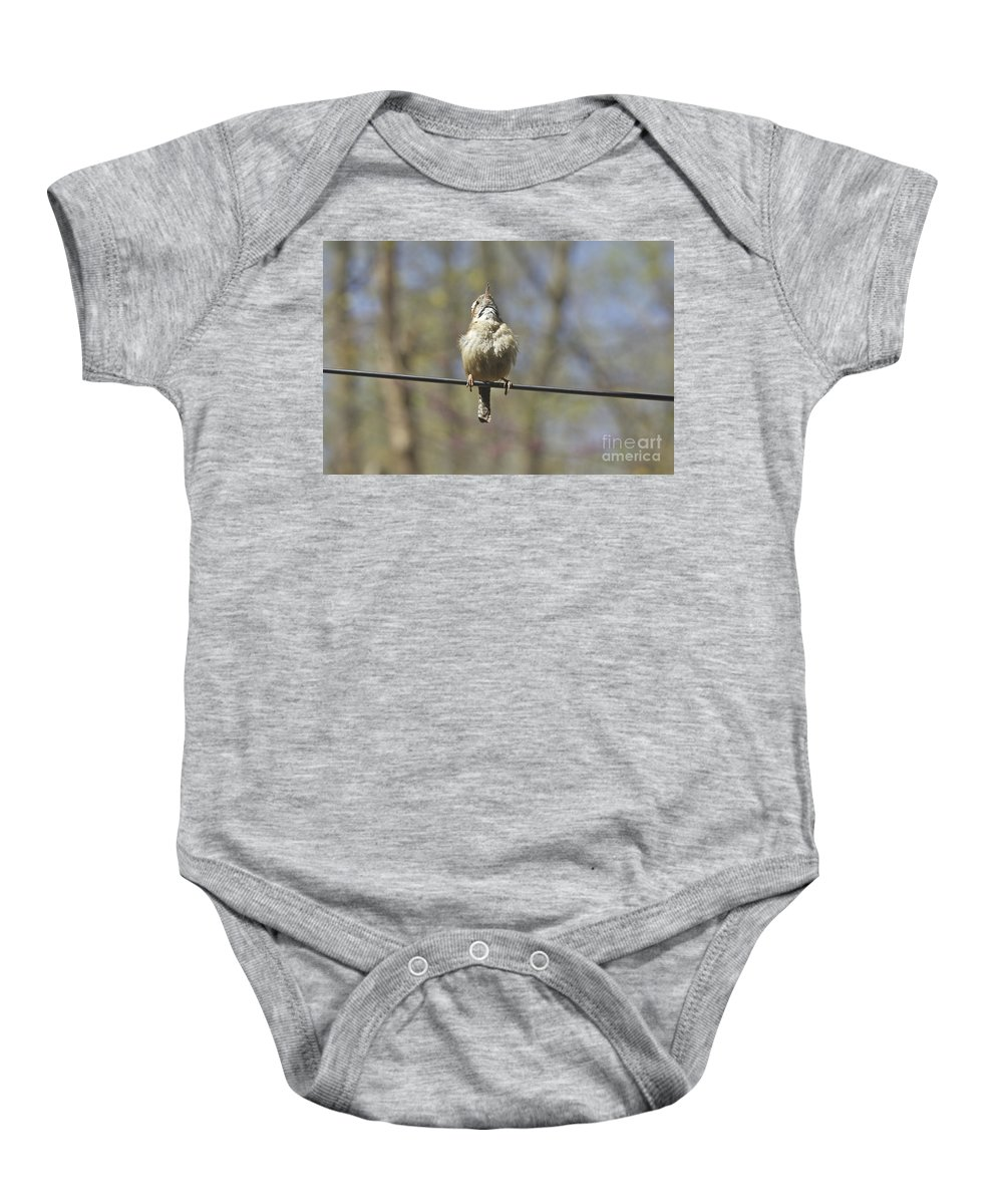 Carolina Wren Baby Onesie featuring the photograph Singing His Heart Out - Carolina Wren - Thryothorus Ludovicianus by Mother Nature