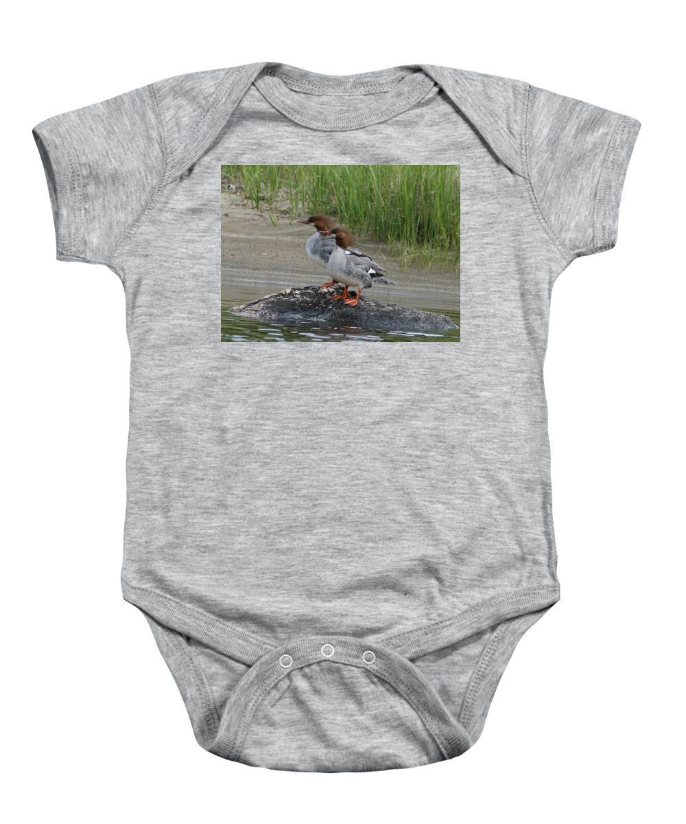 Bird Baby Onesie featuring the photograph Sisters Of Lake Umbagog by Neal Eslinger
