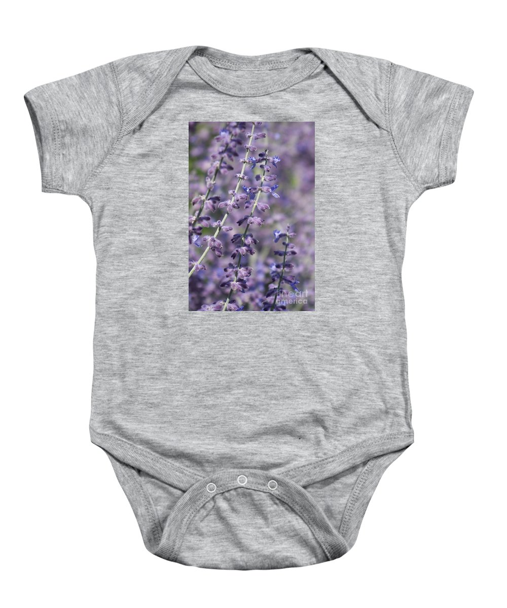 Purple Flower Baby Onesie featuring the photograph Sitting Pretty by Eunice Miller