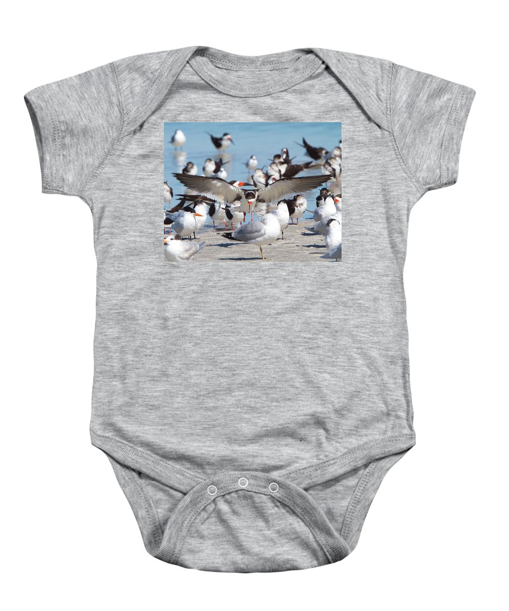 Black Skimmer Baby Onesie featuring the photograph Skimmer Landing by David Beebe