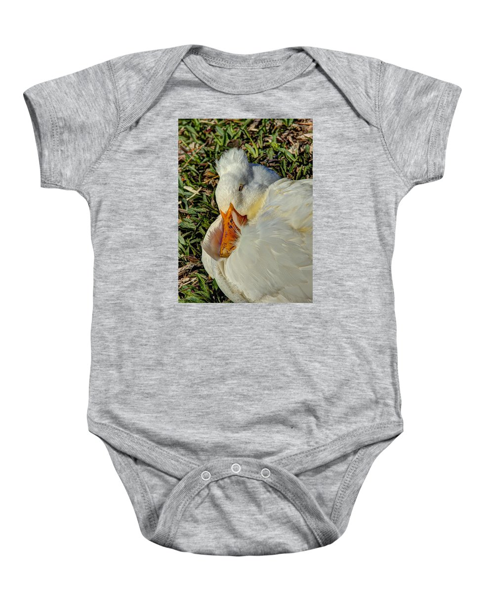 Hdr Baby Onesie featuring the photograph Sleeping Duck by John Straton