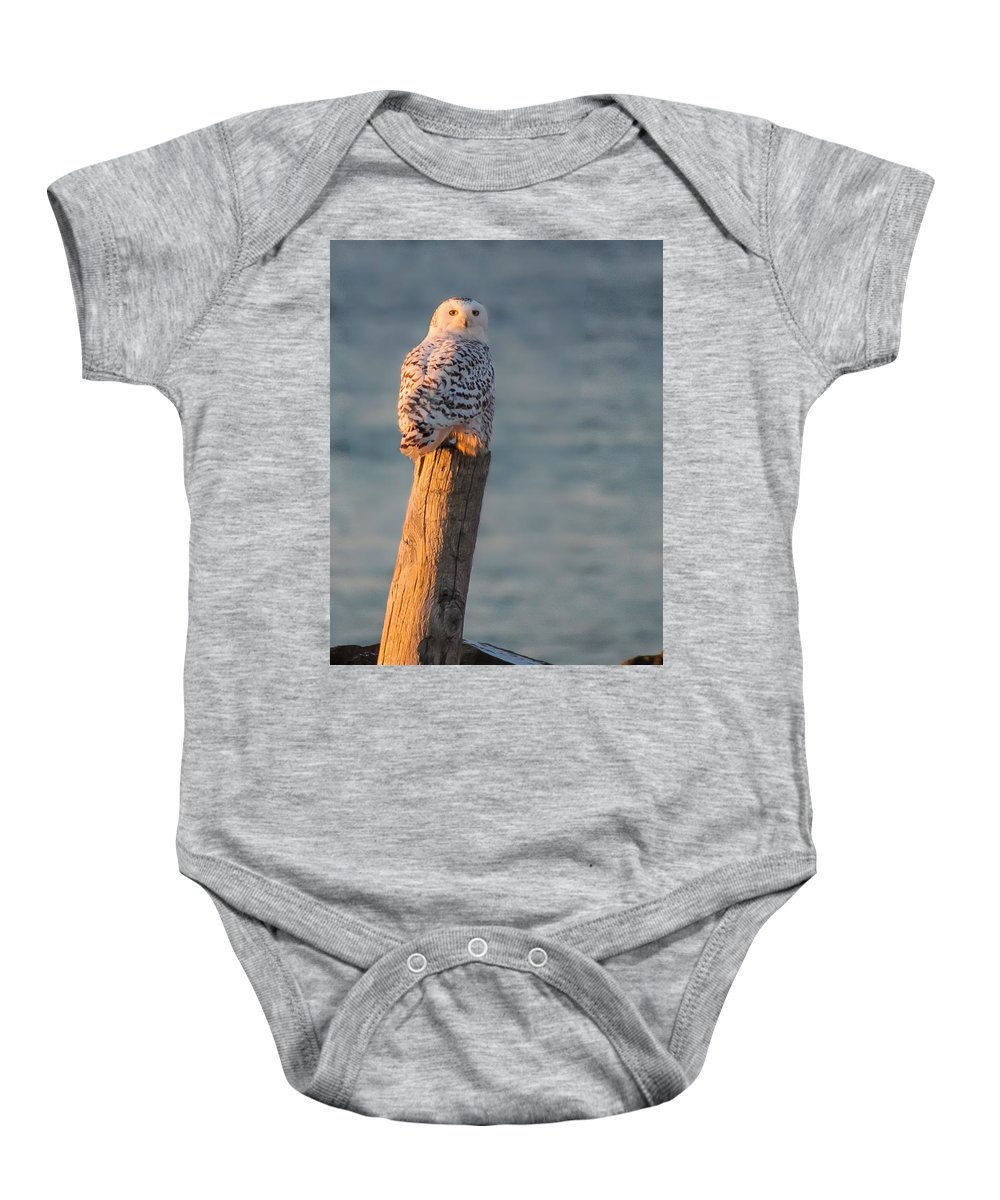 New England Owl Baby Onesie featuring the photograph Snowy Owl At The Seashore by Jeff Folger