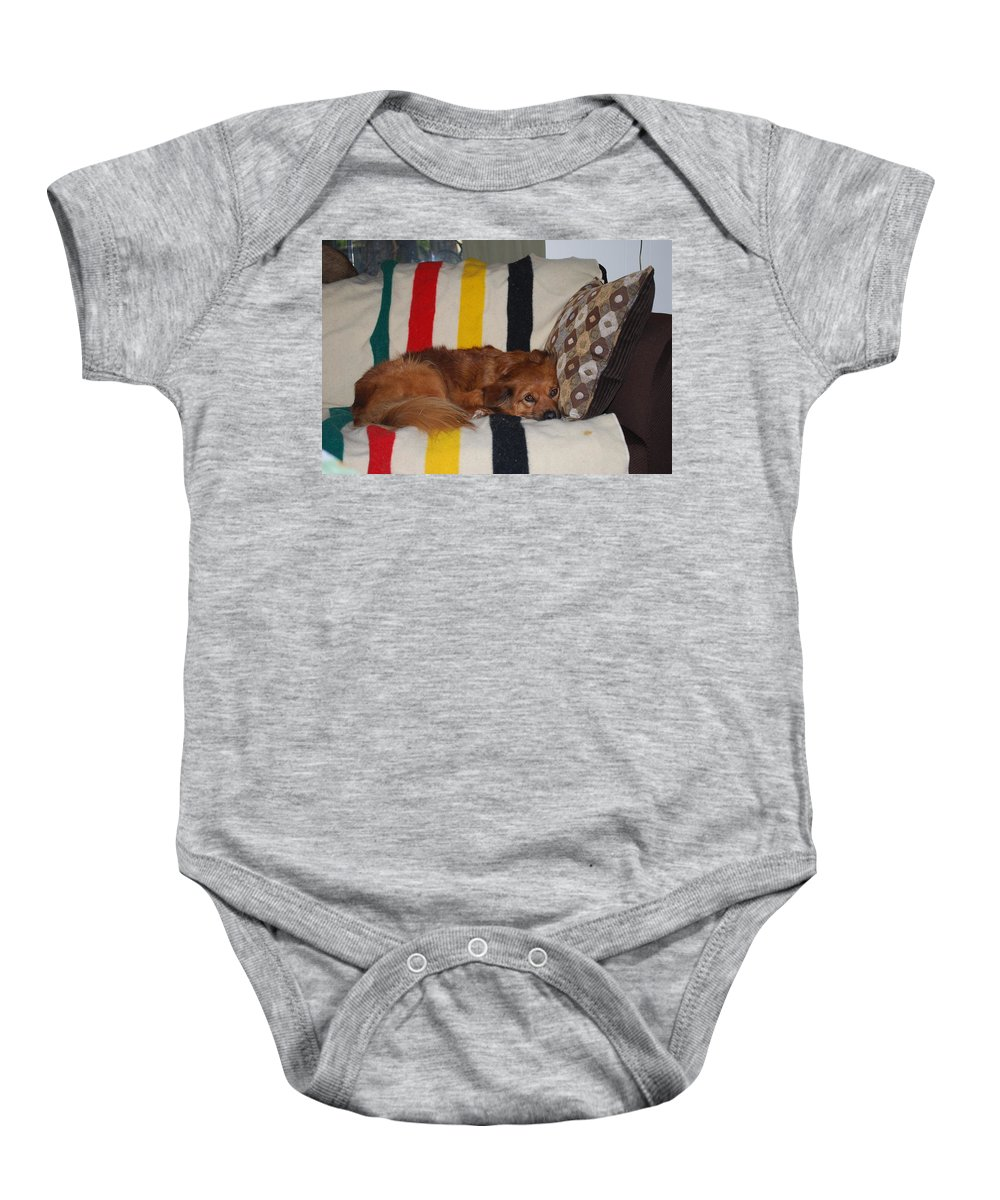 Lady Likes Her Pillow Baby Onesie featuring the photograph Snuggle Time by Robert Floyd
