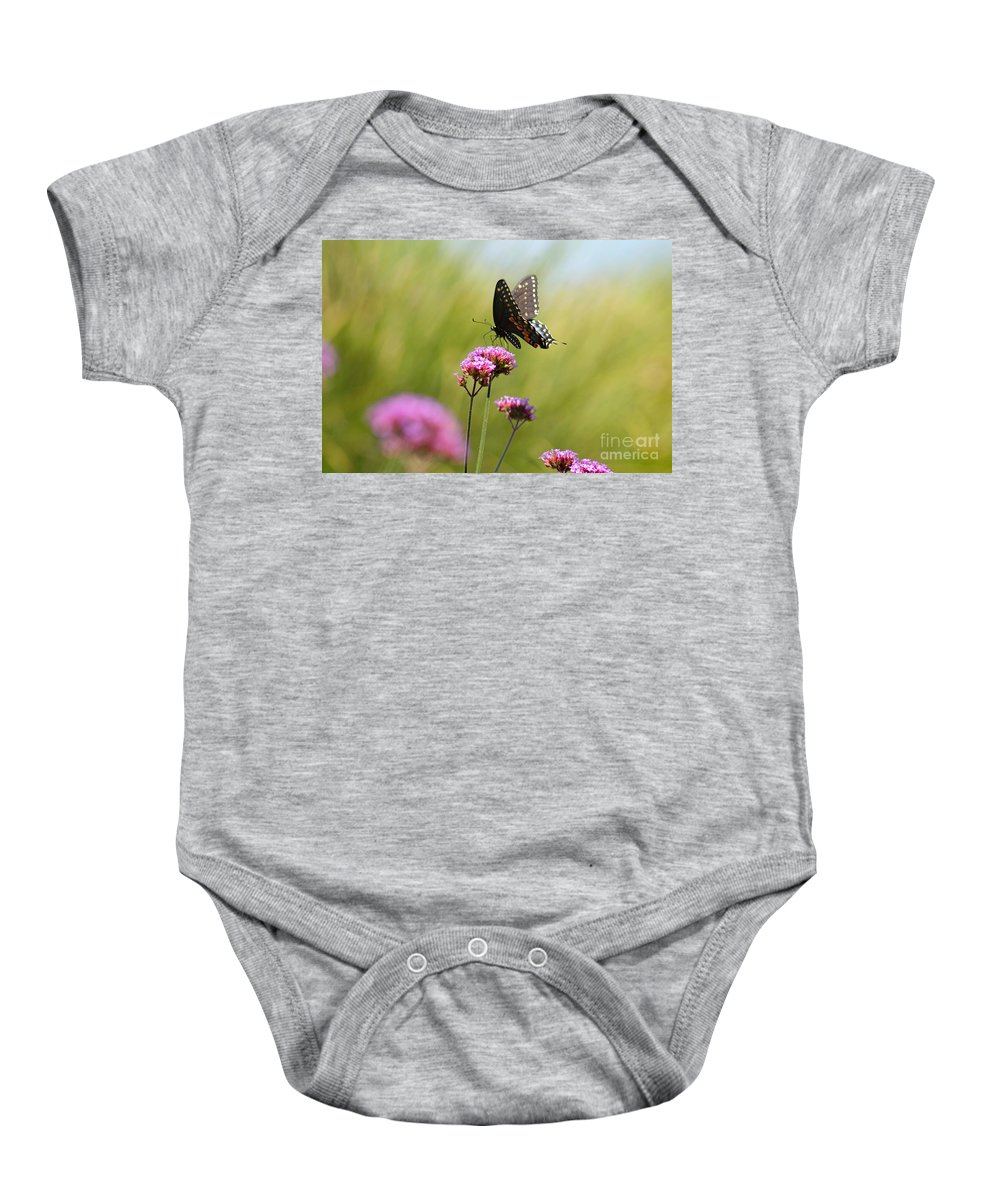 Spicebush Baby Onesie featuring the photograph Spicebush Swallowtail Butterfly In Meadow by Karen Adams