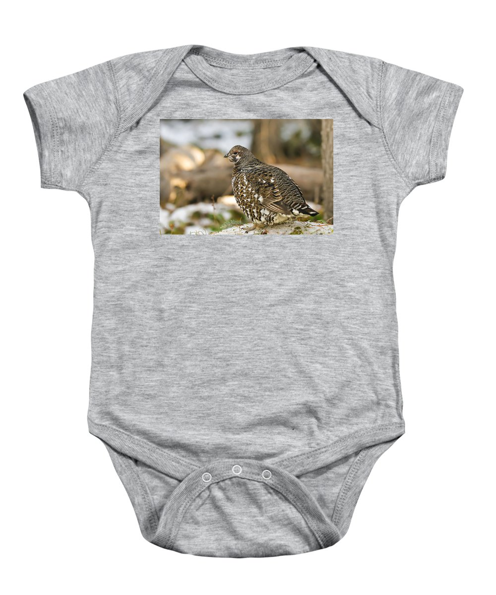 Autumn Baby Onesie featuring the photograph Spruce Grouse In The Snow by Brandon Smith
