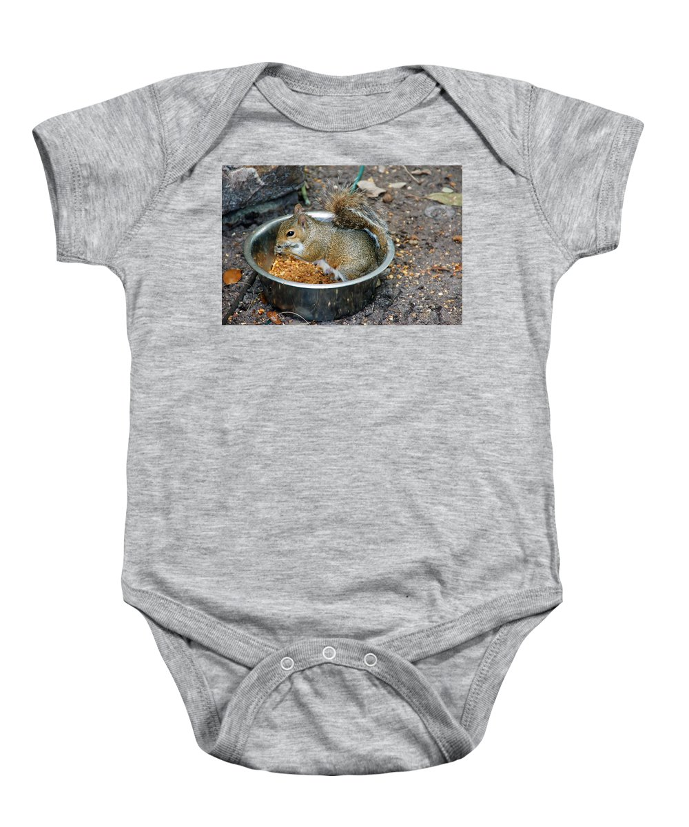Squirrel Baby Onesie featuring the photograph Stealing Food by Aimee L Maher ALM GALLERY