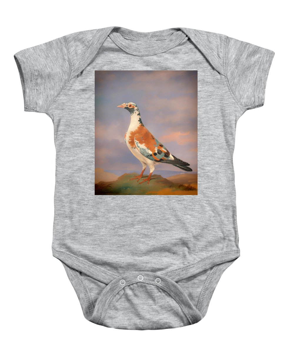Painting Baby Onesie featuring the painting Study Of A Carrier Pigeon by Mountain Dreams