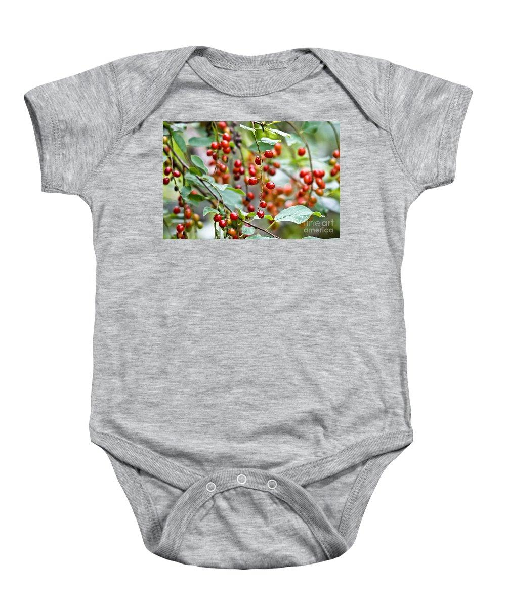 Chokecherries Baby Onesie featuring the photograph Summer Wild Berries by Cheryl Baxter