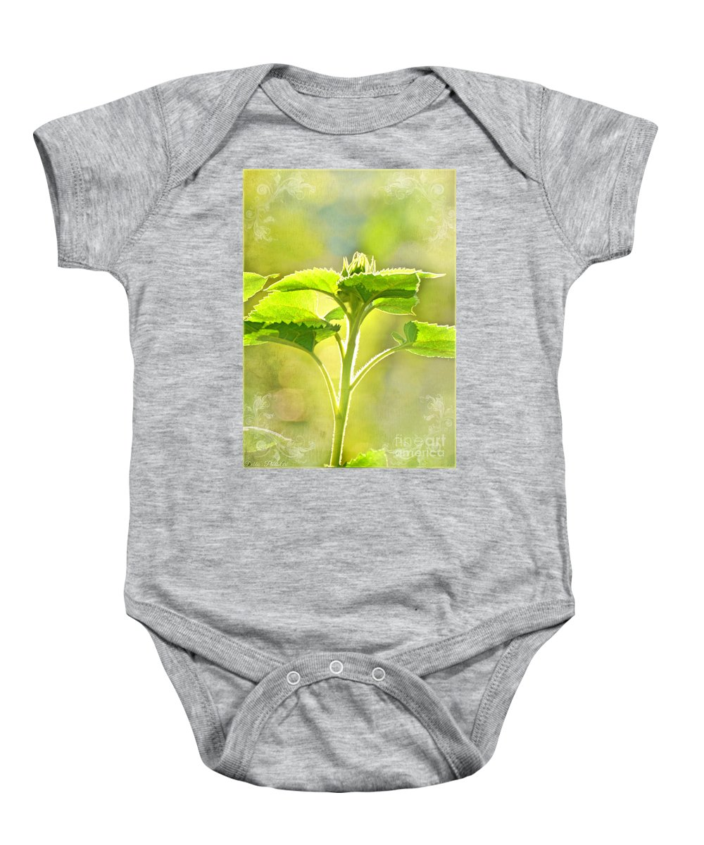 Wall Art Baby Onesie featuring the photograph Sundrenched Sunflower - Digital Paint by Debbie Portwood