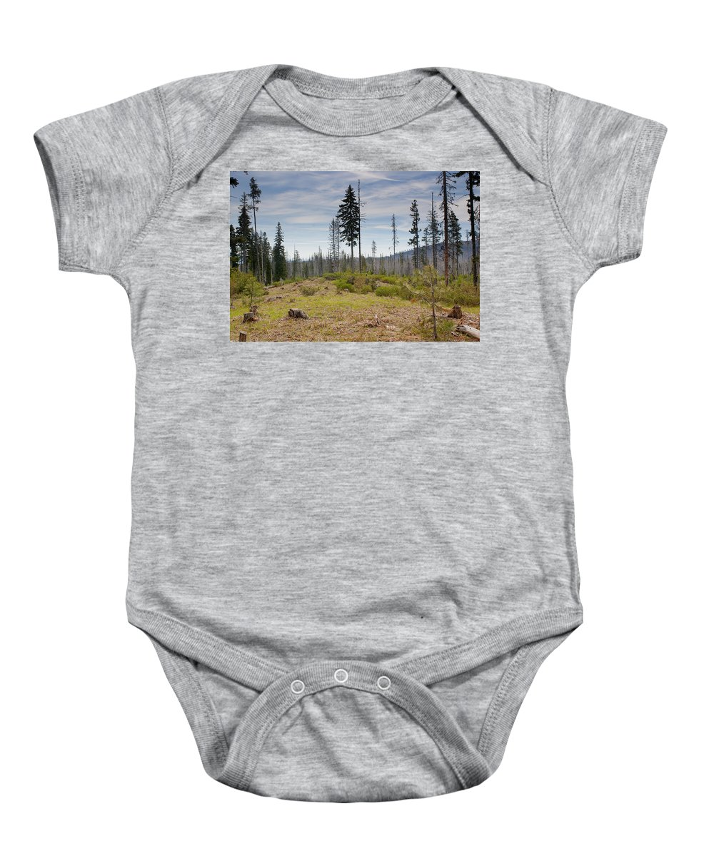 Tree Baby Onesie featuring the photograph Survivors by Belinda Greb