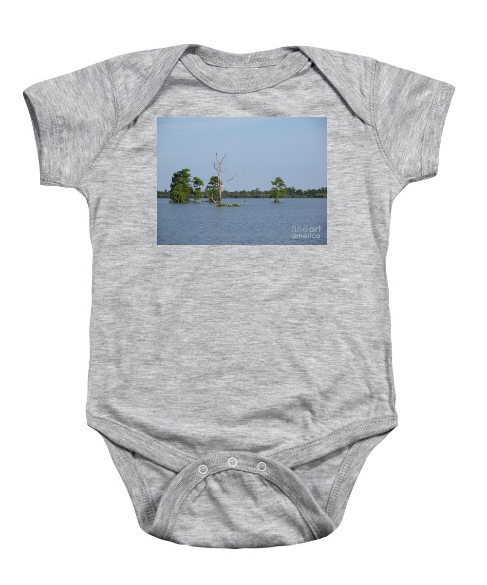Water Lilly Baby Onesie featuring the photograph Swamp Cypress Trees by Joseph Baril