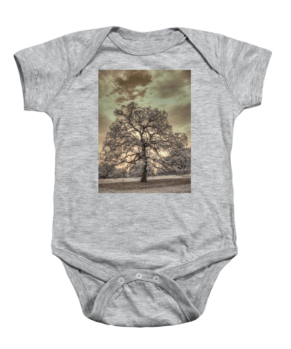 Texas Oak Baby Onesie featuring the photograph Texas Oak Tree by Jane Linders