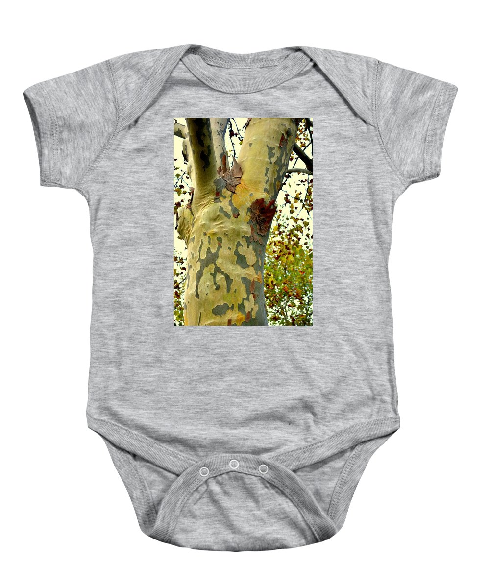 Tree Baby Onesie featuring the photograph The Beatiful Sycamore by Kathy Barney