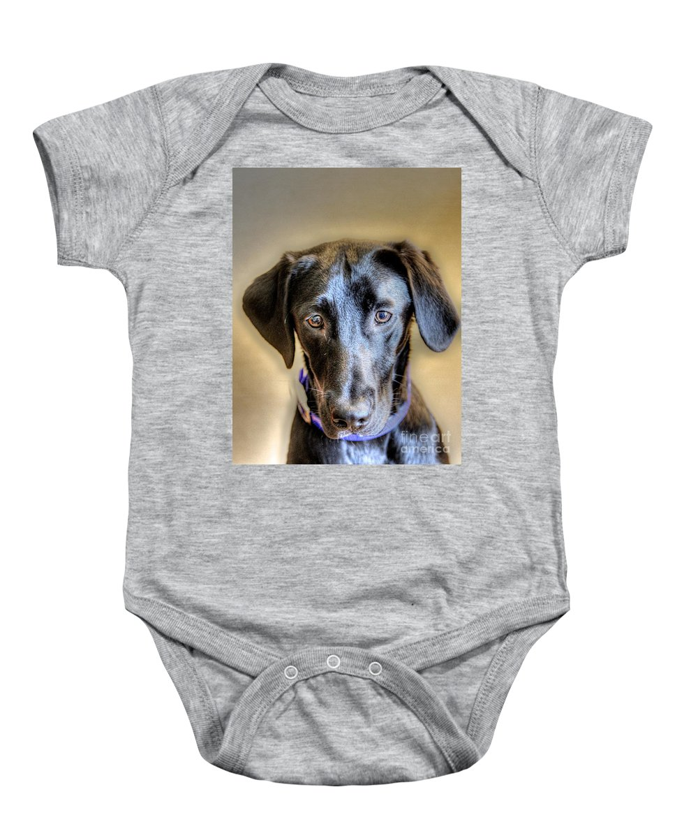 Dog Baby Onesie featuring the photograph The Black Lab by Robert Pearson