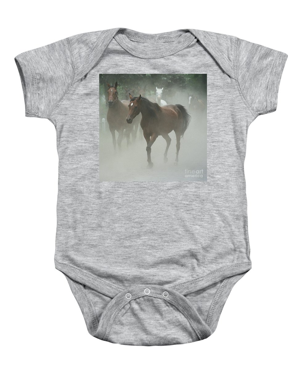 Arabian Horse Baby Onesie featuring the photograph The Daughters Of A Desert by Angel Ciesniarska
