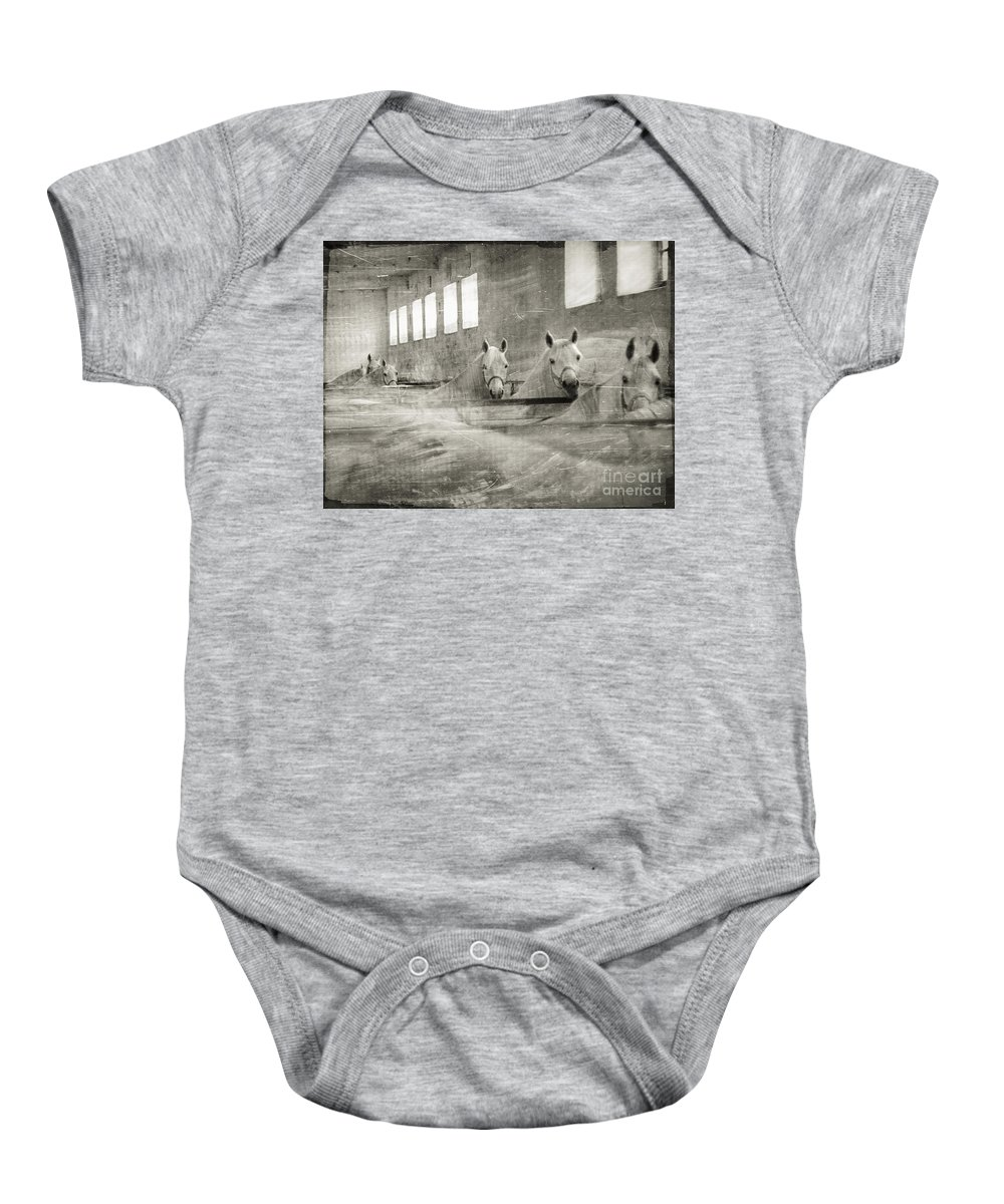 Grey Baby Onesie featuring the photograph The Grey Mares by Angel Tarantella