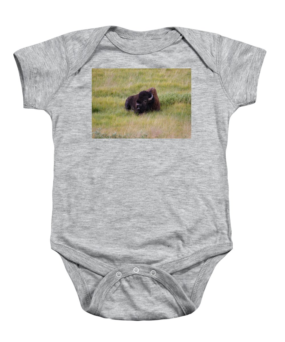 Buffalo Baby Onesie featuring the photograph The Old One by Steve McKinzie