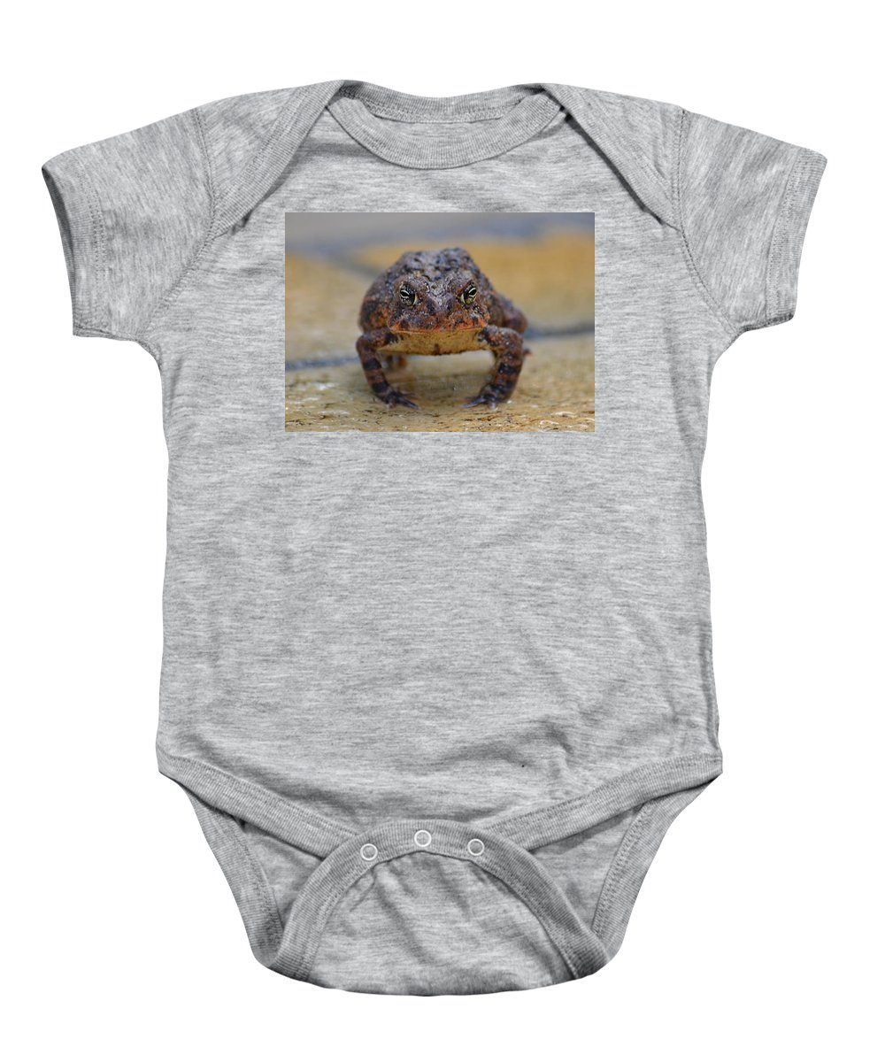 Toad Baby Onesie featuring the photograph Toad With An Attitude by Jeff at JSJ Photography