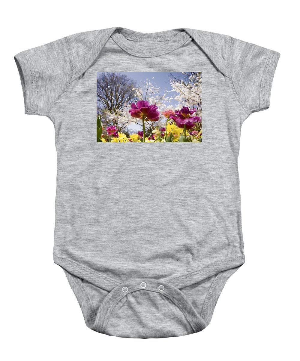 Tulips Baby Onesie featuring the photograph Tulips At Dallas Arboretum V46 by Douglas Barnard