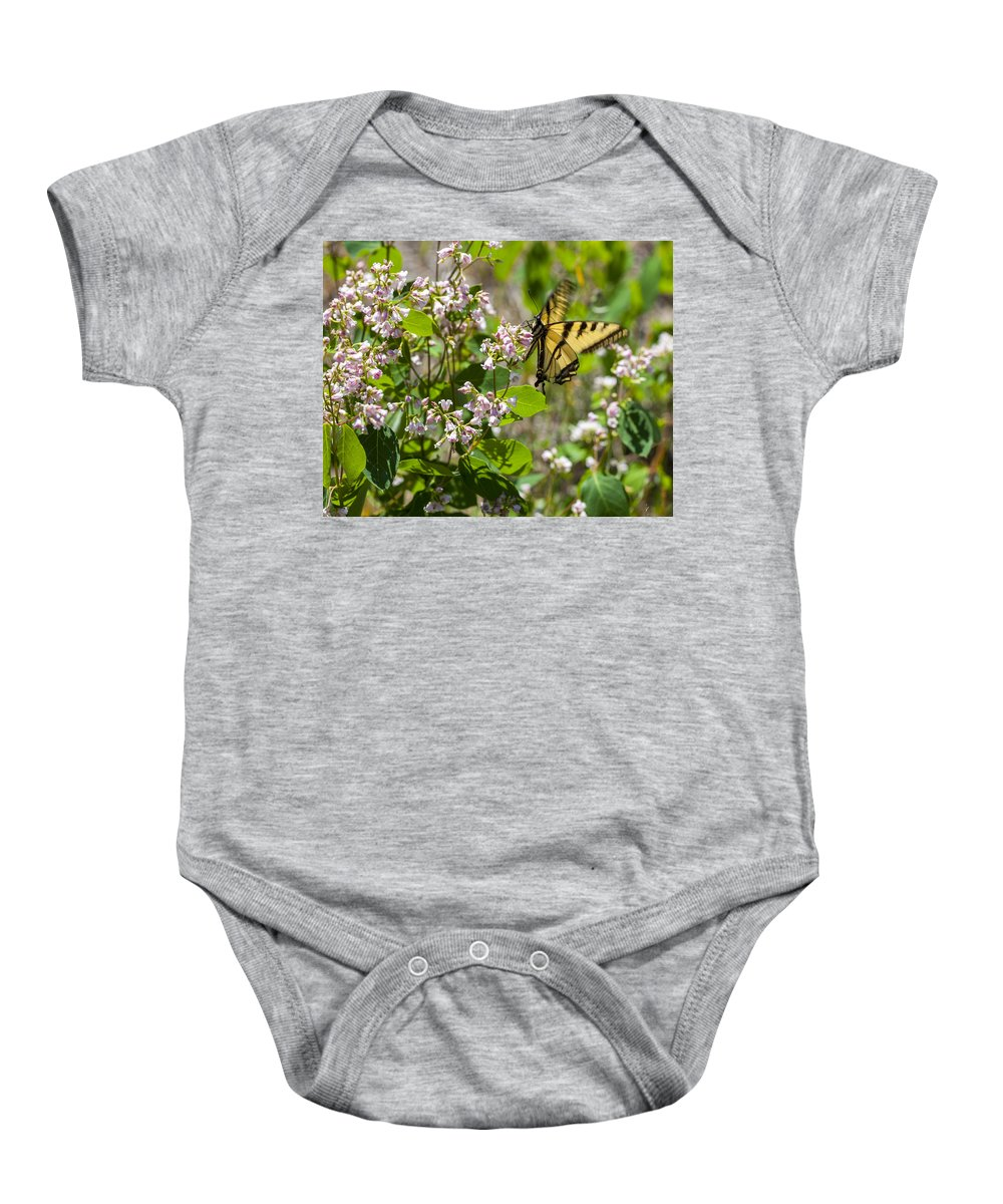 Butterfly Baby Onesie featuring the photograph Two Tailed Swallowtail by Fran Riley