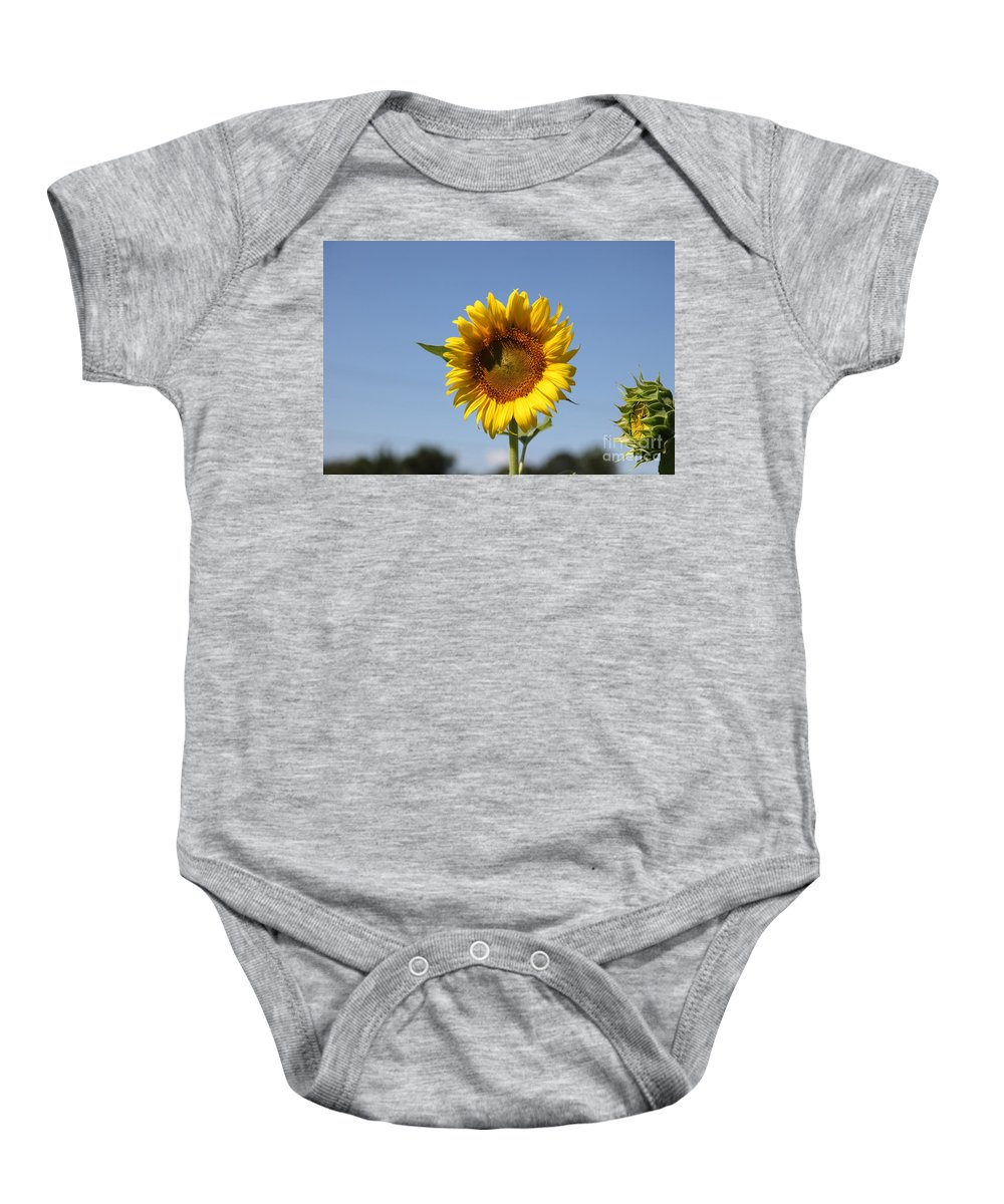 Sunflowers Baby Onesie featuring the photograph United Through Challenge by Amanda Barcon