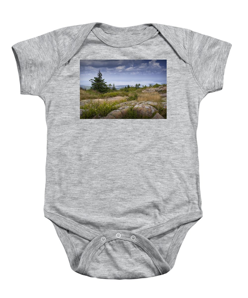 Art Baby Onesie featuring the photograph View From Top Of Cadilac Mountain In Acadia National Park by Randall Nyhof