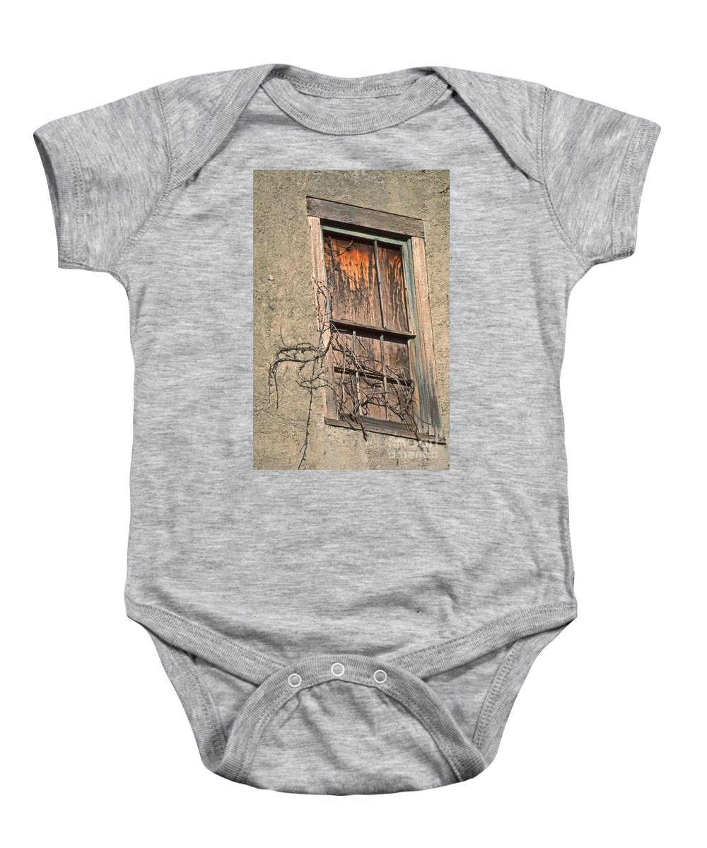 Scenic Tours Baby Onesie featuring the photograph View From Without by Skip Willits