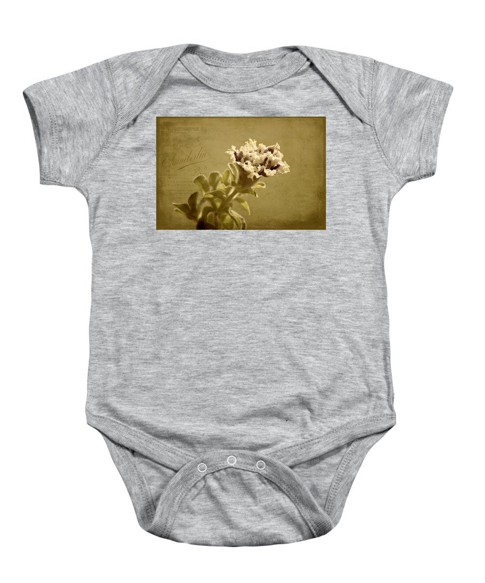 Petunias Baby Onesie featuring the photograph Vintage Double Petunia by Mel Hensley