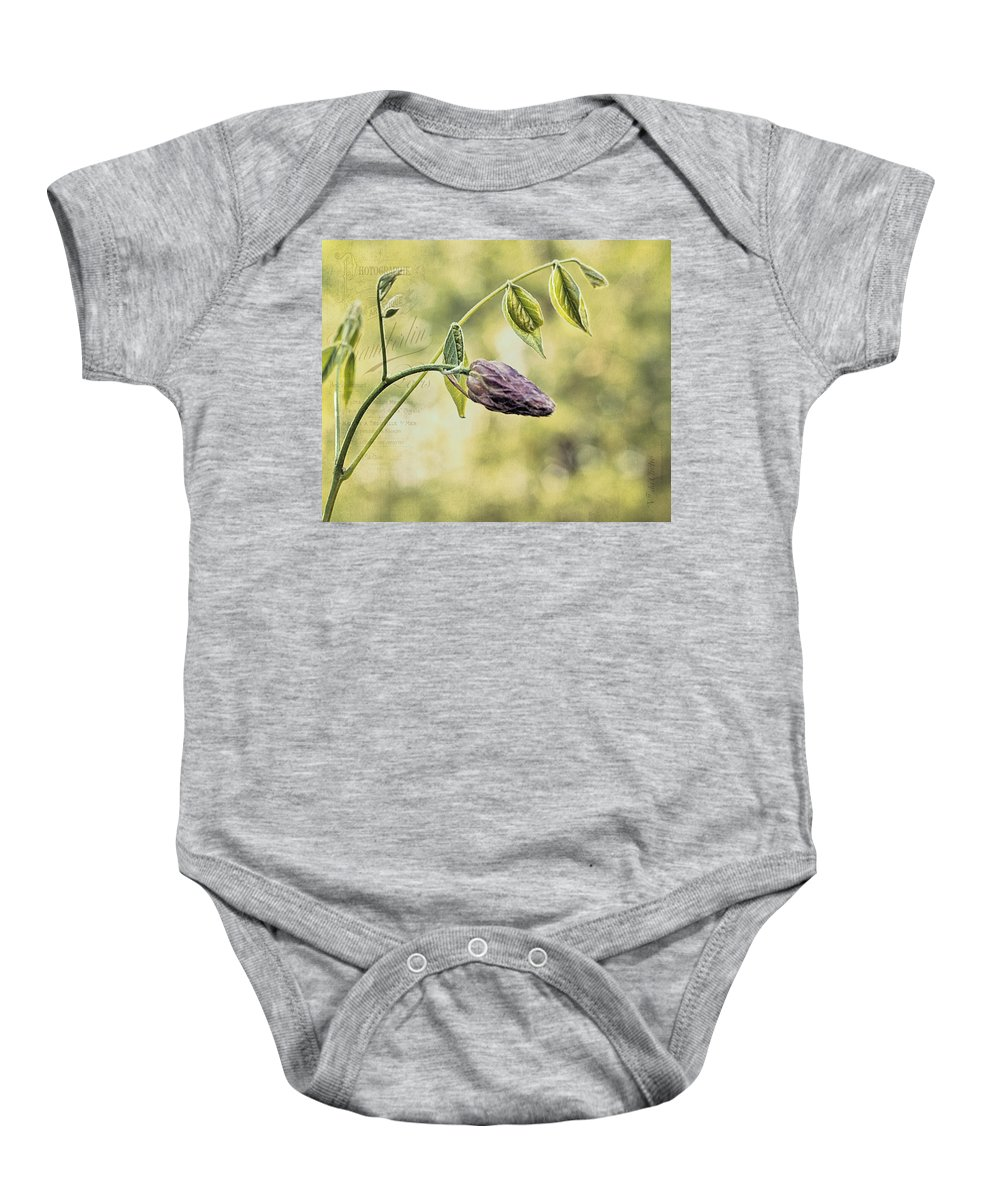 Vintage Baby Onesie featuring the photograph Vintage Wisteria by Mel Hensley