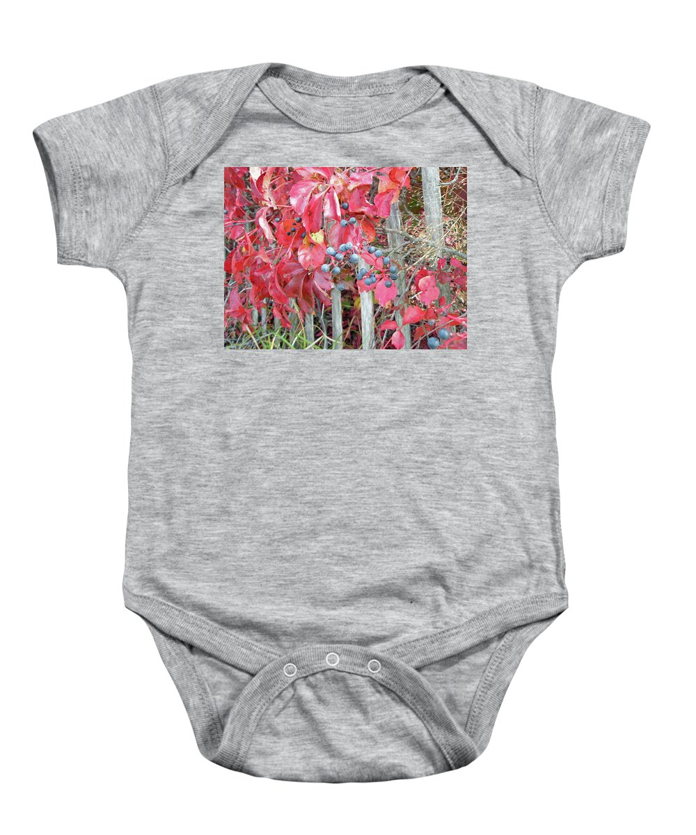 Foliage Baby Onesie featuring the photograph Virginia Creeper Fall Leaves And Berries by Mother Nature