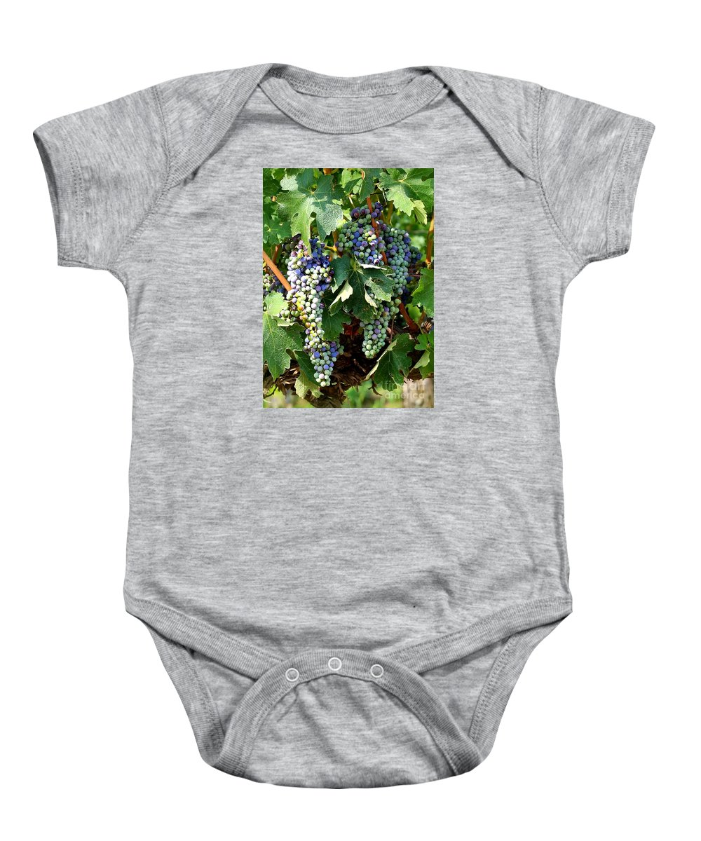 Food And Beverage Baby Onesie featuring the photograph Waiting for Wine by Carol Groenen