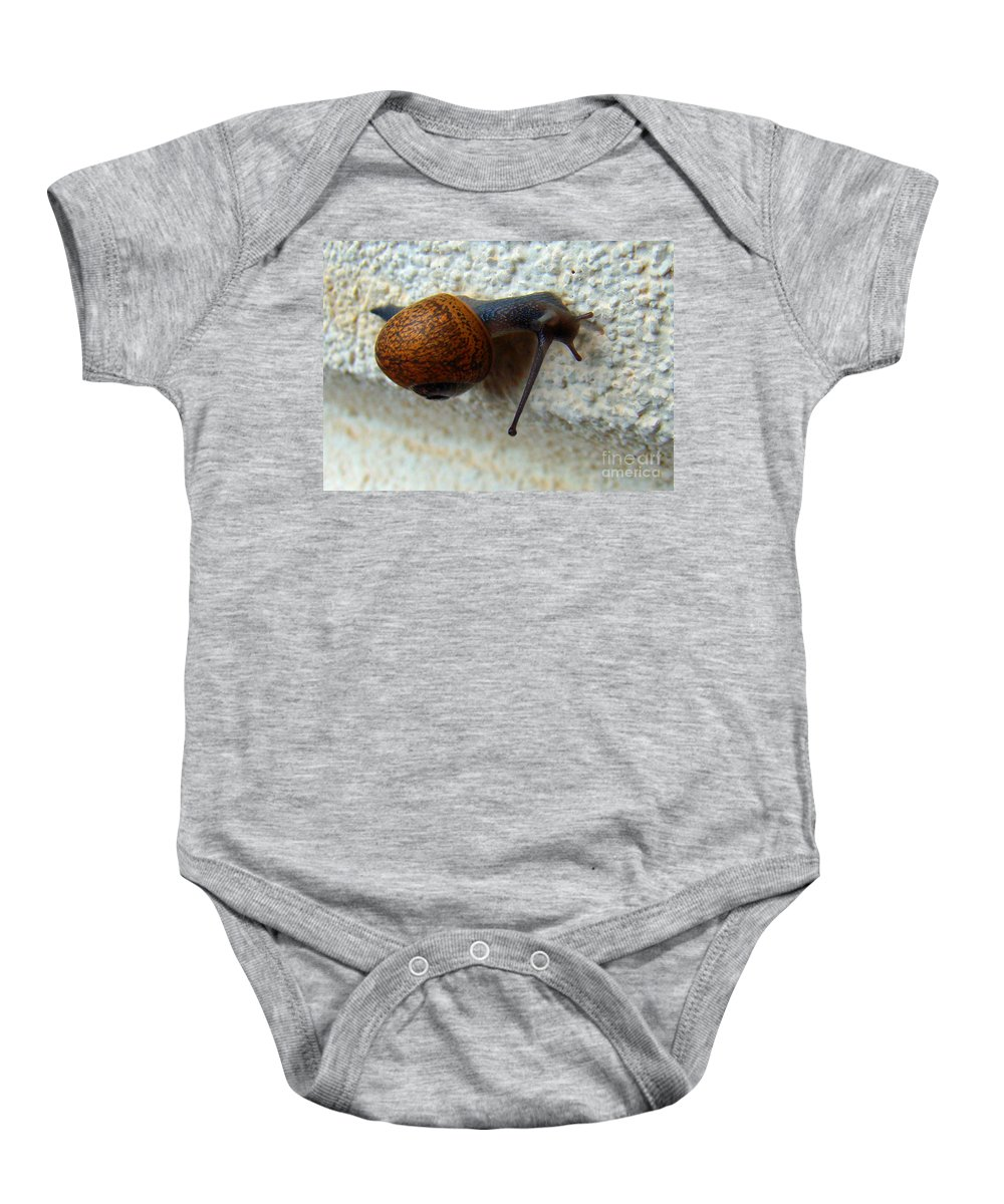 Garden Snail Baby Onesie featuring the photograph Wall Snail 1 by Nancy L Marshall