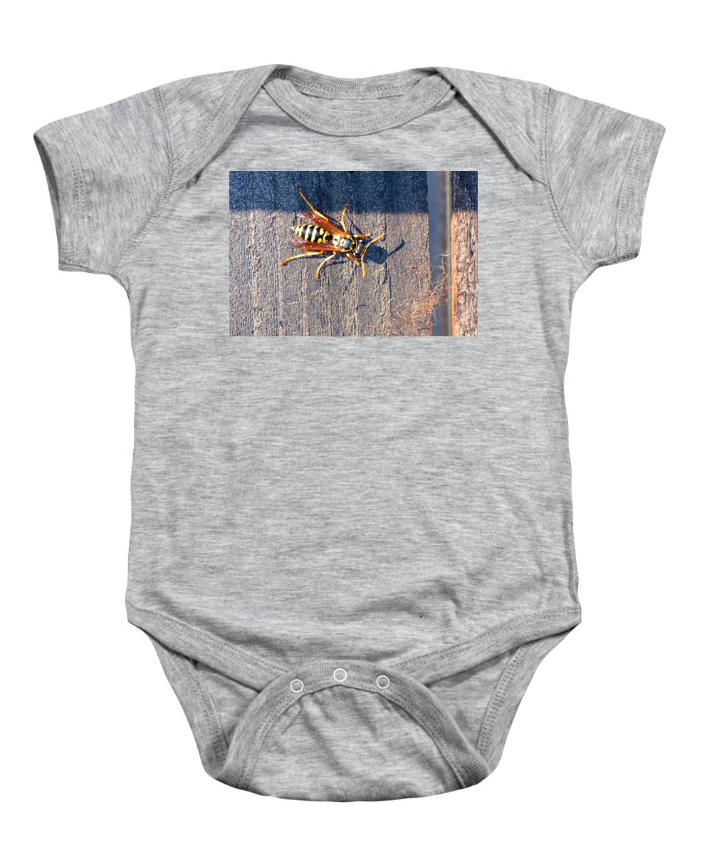 Fence Baby Onesie featuring the photograph Wasp 2 by Brent Dolliver